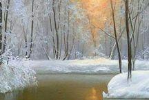 Zimna priroda