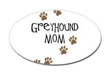 Greyhounds / by Jamie Dickey