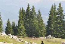 ✈ Travel to Romania / Travel inspiration to Romania