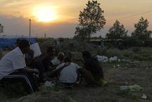 Migrazione / Spostamenti da un luogo a un altro di un popolo alla ricerca di migliori  condizioni di vita..,
