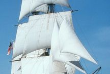 tall ships / by Patricia Arvin