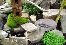 Fairy gardens / by Lisa Richards