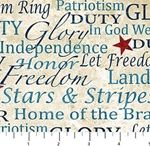 NORTHCOTT FOURTH OF JULY FABRIC