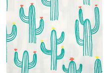 Cactus Party and Decoration