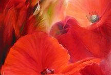 AMAPOLAS / Una flor silvestre, delicada y única. Desde niña estoy muy unida a las amapolas.....