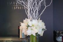 kvety do vazy