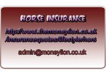 UK Horse insurance
