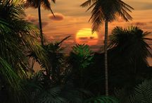 Sunrise & Sunset / by Queen Jenevere