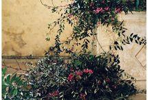 Idee Noosh per Chiara / Church and Ambiance decor inspiration