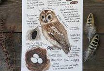 animal journaling