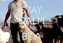 Doggies / Eerste Hulp Bij Opvoeden voor dogs