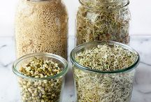 Sprout grains