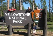 Yellowstone / by QueenBee to 3