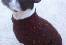 | dog sweater | / by | krzh |