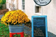 BlueHouse Soap Company / BlueHouse Soap Co. - Offering a wide variety of locally handcrafted All Natural Cold Processed Goat Milk Soap, Whipped Body Butter; bath accessories and gifts for both men and women. (Montgomery County, PA 19474)