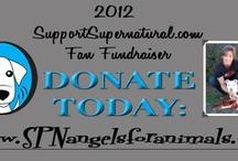 Fandom Charity Work