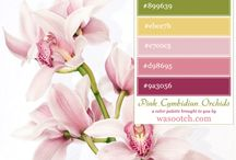 Color Palettes / Color palettes to use for weddings and other special occasion parties. Lots of different color palette choices to choose from. Get color inspiration for your wedding or other special occasion.
