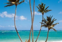 Dominikanische Republik  / Playa Bavaro / #Grand palladium palace resort