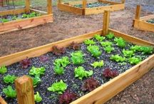 Garden Ideas / Ideas for our backyard farm.