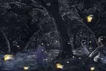 Bioluminescence,Nature's Luminocity