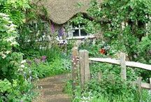 ambience /  beautiful and wild gardens that inspire our senses