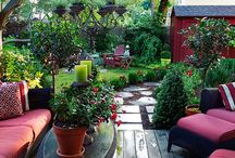 backyards / by Katie Krotzer Mangold