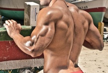Back / by MuscleModelBlog.com
