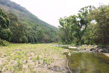 landscape / Rancho Actopan Veracruz