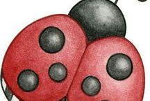 Lienka - Ladybug