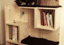 casas gatos