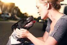 Ubezpieczenie Psa - Bezpieczny Pupil / Ubezpieczenie psa - za niewielką kwotę miesięcznie możesz być ubezpieczony od nieszczęśliwego wypadku. Ubezpieczenie pokrywa również leczenie weterynaryjne. Warto zajrzeć na stronę internetową, jet tam obszerny dział pytań i odpowiedzi na najczęstsze zapytania dotyczące ubezpieczenia zwierzęcia, w tym przypadku psa.