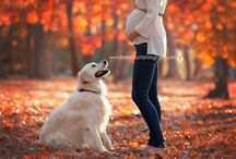Photo Ideas: Maternity + Dogs