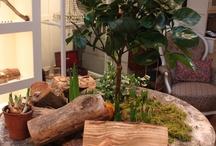 Natural Indoor Play