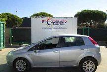 Fiat Grande Punto (199) (2005 - 2012) / Recuperauto Palafolls S.L, tiene a su disposicion varios modelos y de diferentes versiones de Fiat Grande Punto para su despiece y venta de recambios totalmente garantizados, no dude en contactar con nosotros al 93 765 04 01, o visite nuestra página web: www.recuperautopalafolls.com!