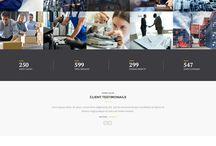 Website Factory, Industry