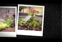 Gardening / by x