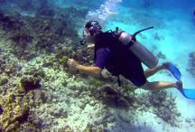 IWTTT - VIDEOS - Scuba Diving Cancun & Playa Del Carmen Mexico / I promote for Sandos Resorts Vacation Club which offers a 5 night all inclusive stay for attending their timeshare promotion!  http://IWantToTravelTo.com
