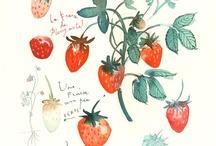 Watercolor / by Anna Satalino