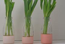 reciclaje frascos