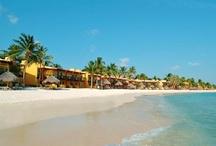 My Divi & Tamarijn Aruba Vacation / by Nicole Murray