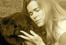 Dog Heaven / Marley And Me...  my life with the world's best dog!