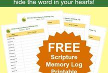 Bible Class / by Becki Murray