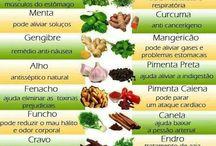 aromáticas e plantas