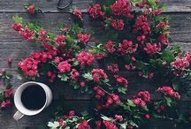 Good morning time