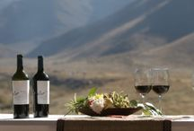 Mendoza, Argentina – Malbec and More / Malbec is a type of wine native to the area of Mendoza Argentina (as well as France) and features a taste for the more sophisticated wine drinker's palate.