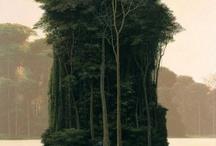 ostrov stromů