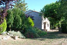 Masia Esplanes - Vinyes / Les vinyes que cuidem per fer els vins de la D.O. Montsant