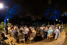 Houston Zoo's Jaguar Venue / Reserve your space today!