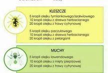 kleszcze komary muszki