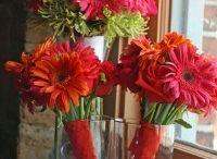 Florals/ Landscapes / Wedding ideas